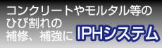 IPHシステム